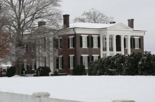 Rippa in Snow